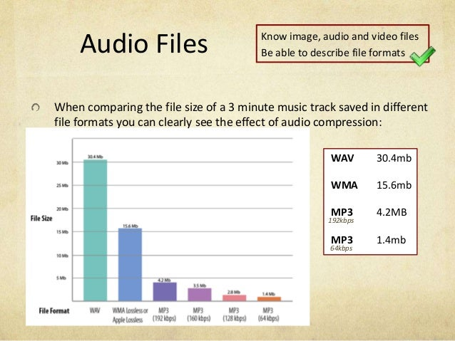 audio file formats pdf