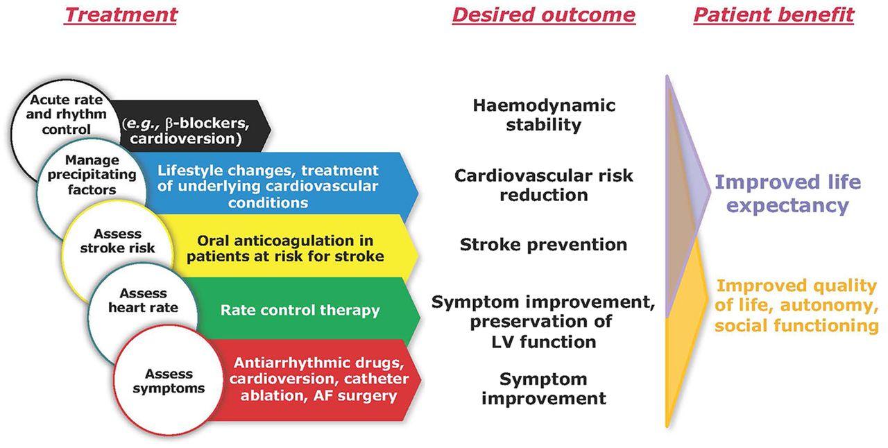 aha atrial fibrillation guidelines 2017 pdf