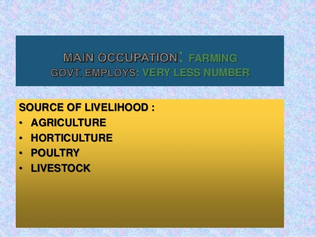 dap fertilizer application rate per hectare