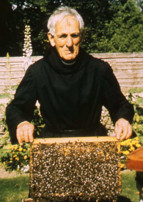beekeeping at buckfast abbey pdf download