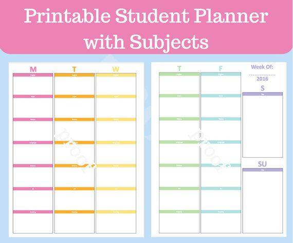 daily study timetable for students pdf