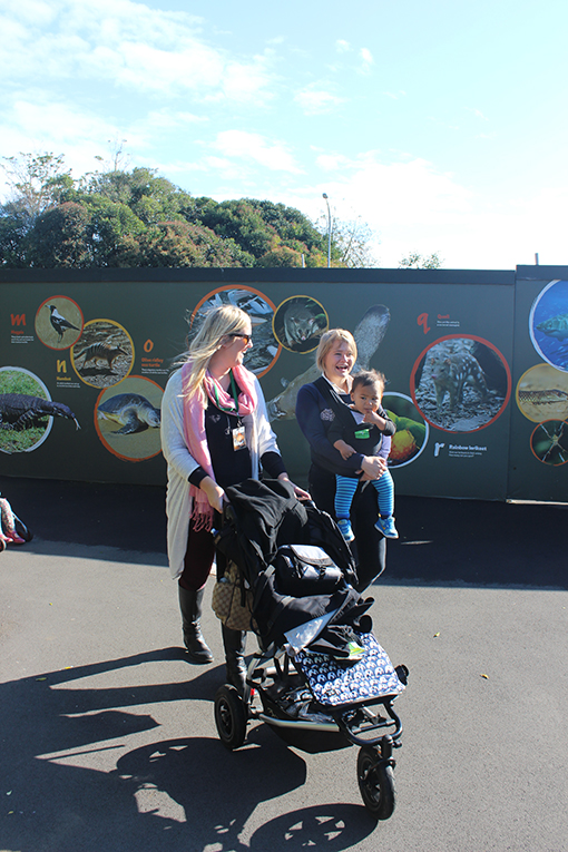 auckland zoo application