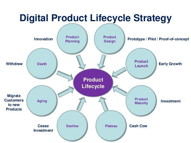 digital marketing strategy book pdf