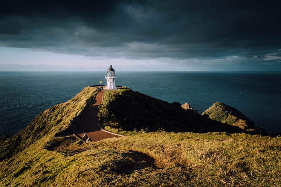 download nz eastern cape guide