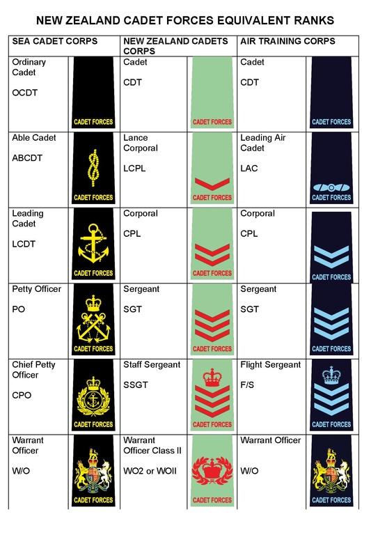 cadet force officer training pdf nz