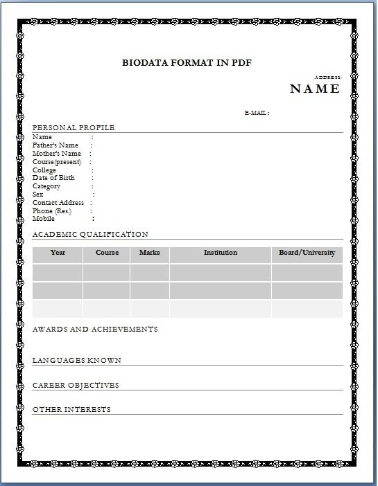 biodata application blank