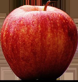 apple com nz how to guide