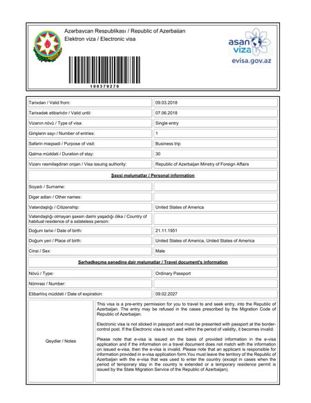 e visa sample form