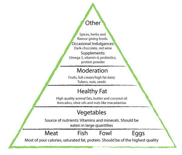 banting diet tim noakes pdf