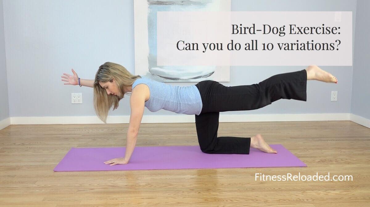 bird dog exercise instructions