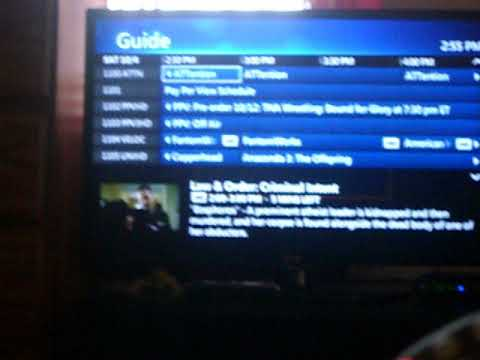 channel 10 guide