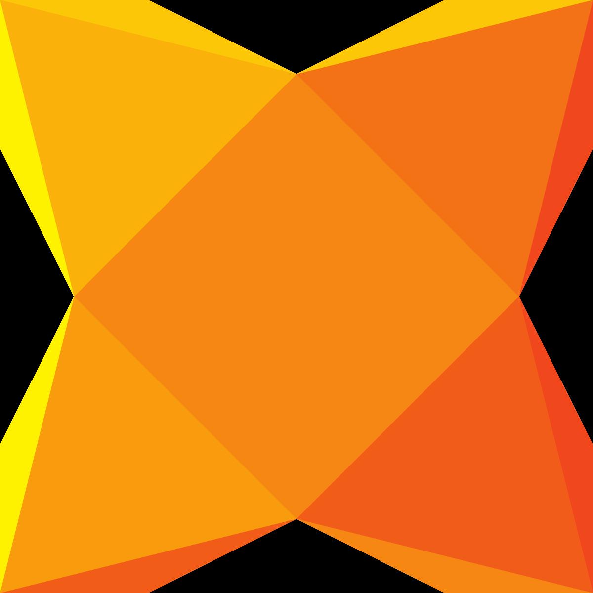 developer application license