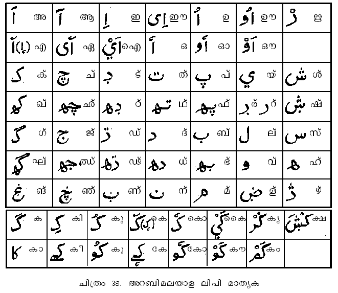 arabic malayalam meaning dictionary