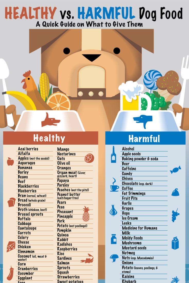 addiction dog food feeding guide