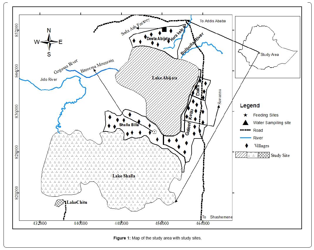 abijata shalla national park pdf