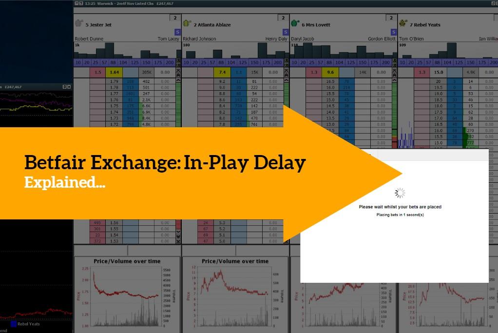 betfair exchange trading guide