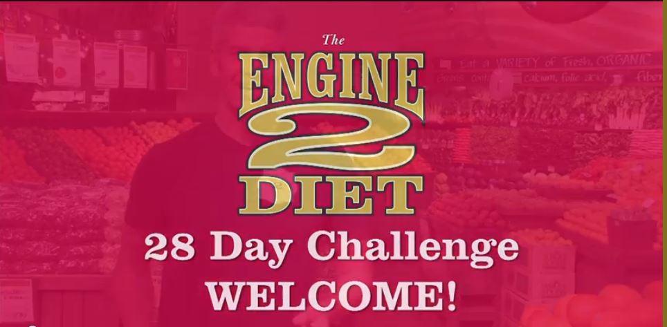 28 day ecommerce plan pdf