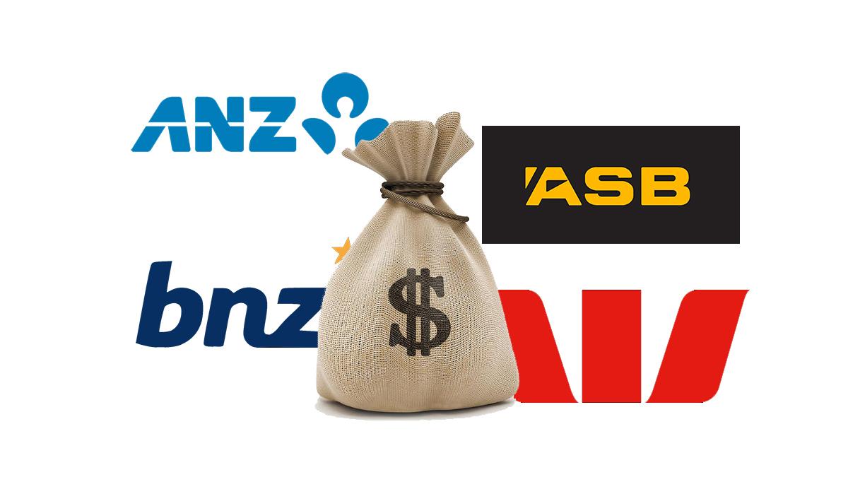 bnz fees guide