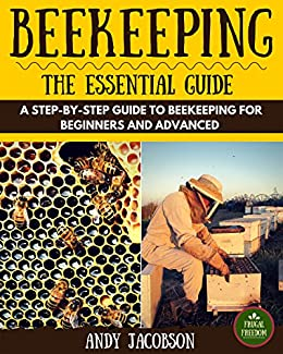 building beehives for dummies pdf