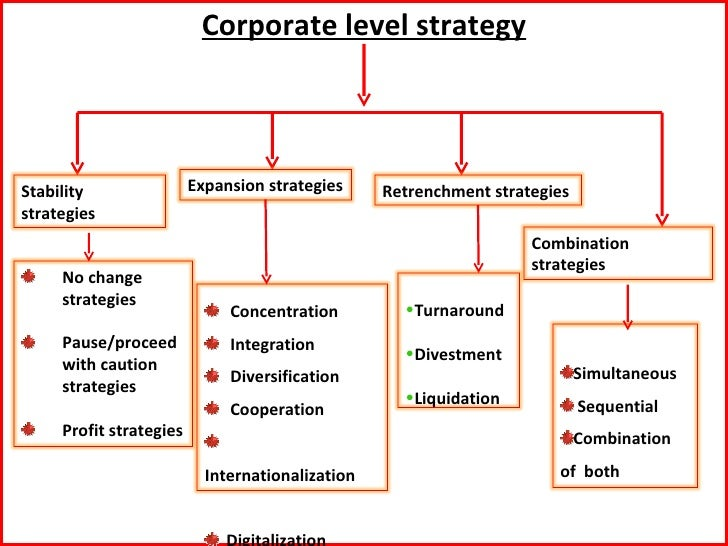 business level strategy definition pdf