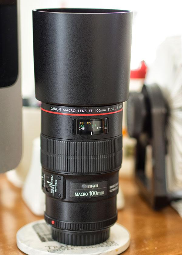 canon 100mm macro sample photos