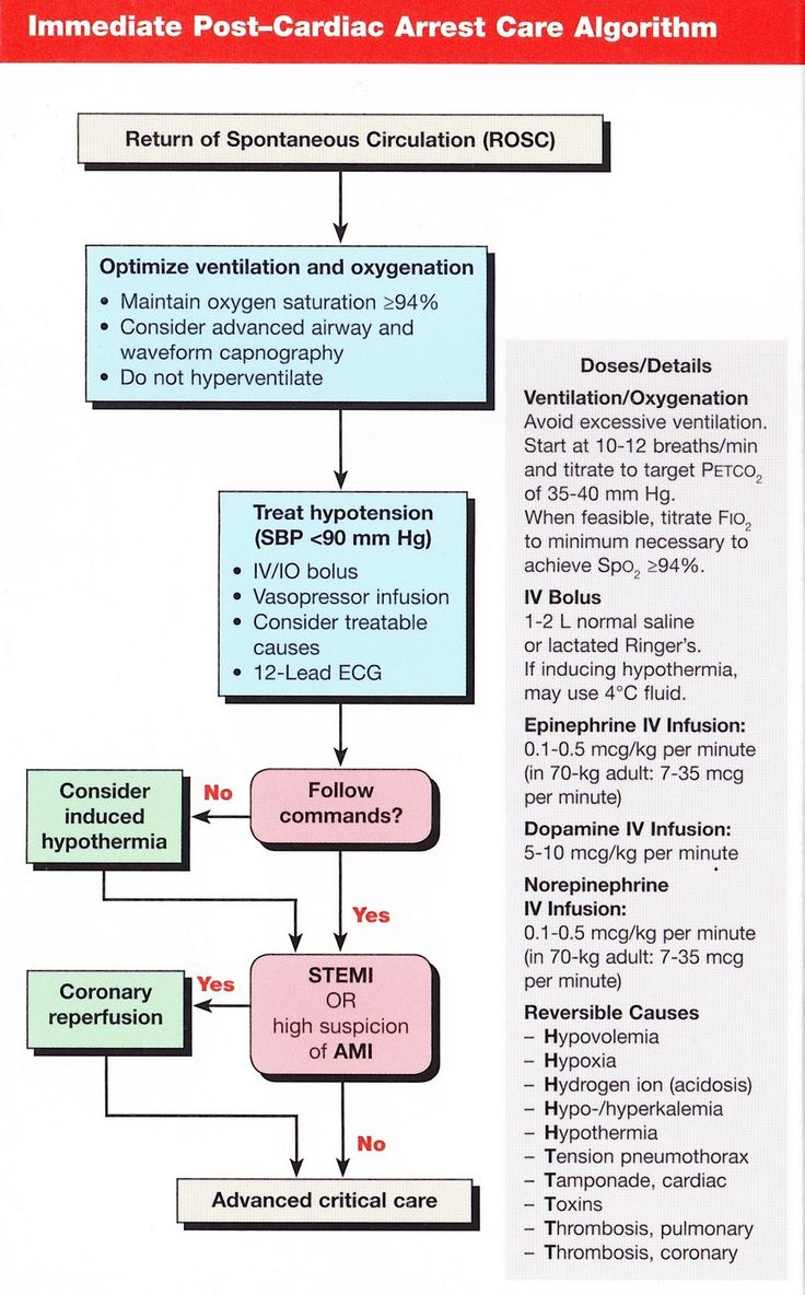 cardiac arrest algorithm pdf