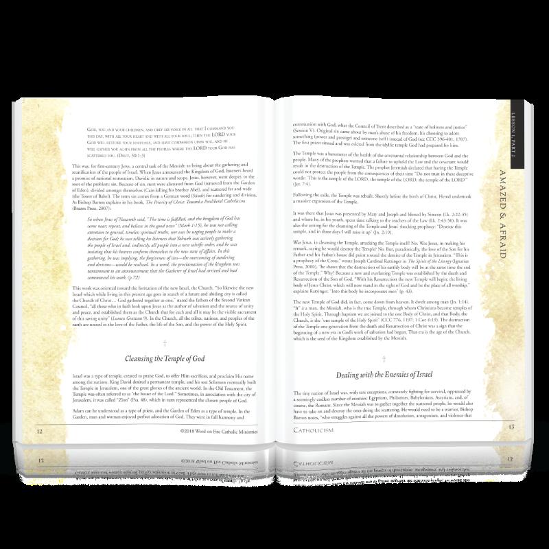 catholicism series study guide