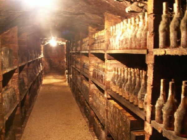 cellar hand guide