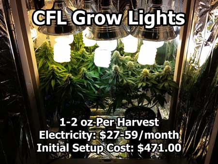 cfl grow guide
