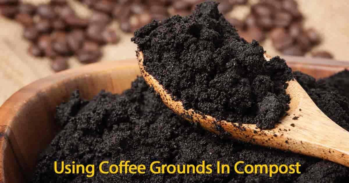 coffee grounds as fertilizer pdf