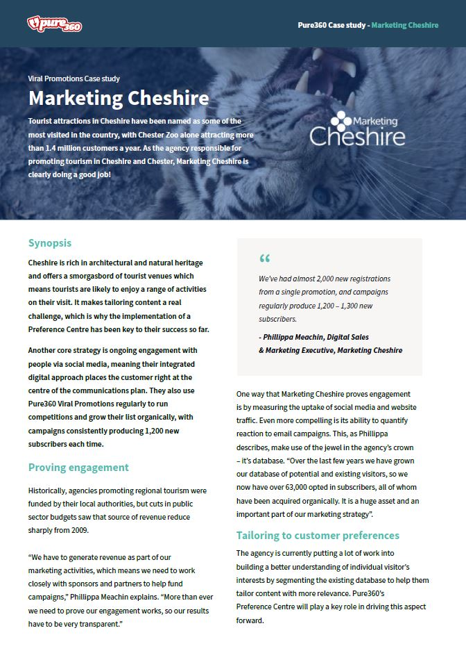 digital marketing campaign case study pdf