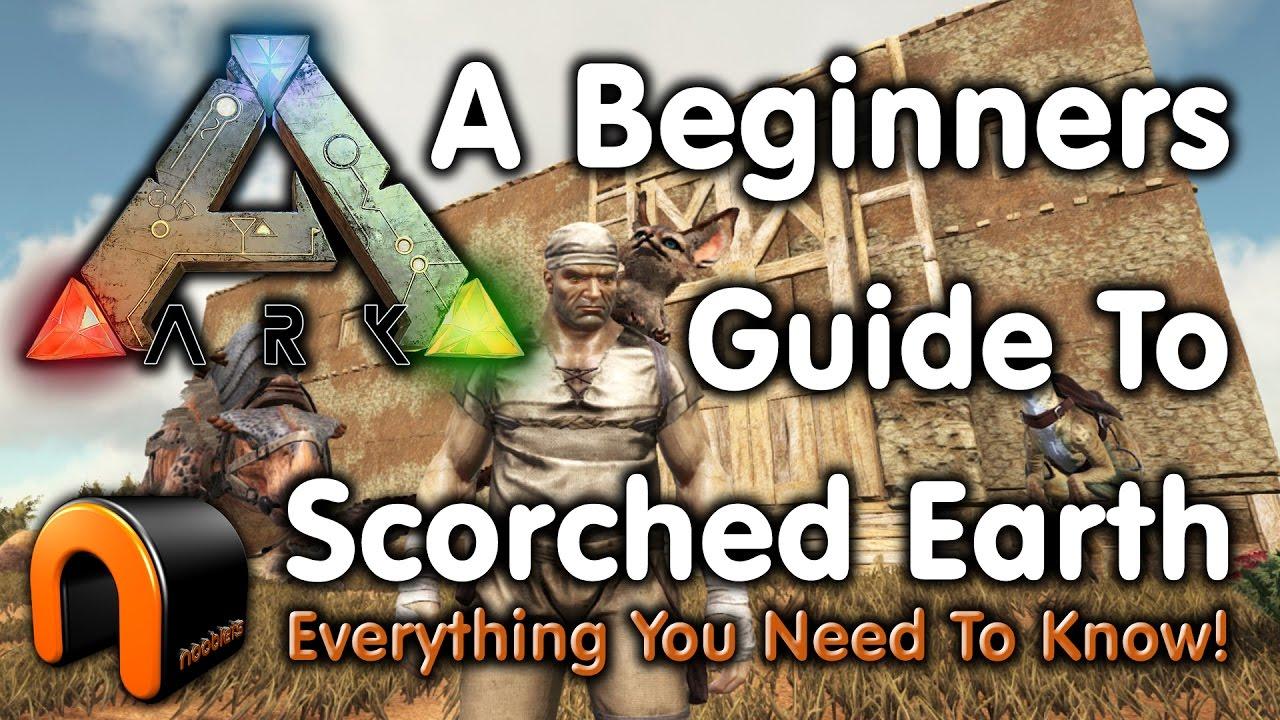 ark guide for beginners